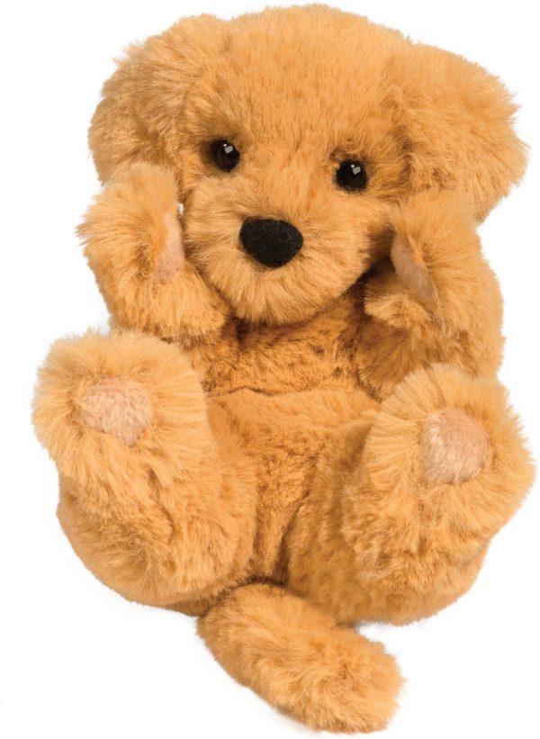 Gold Ret Puppy Handful