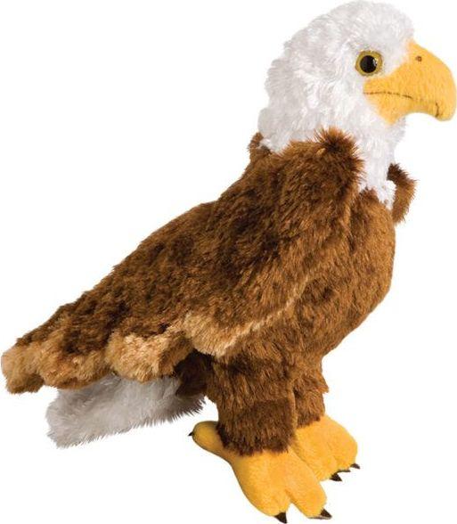 Colbert Eagle
