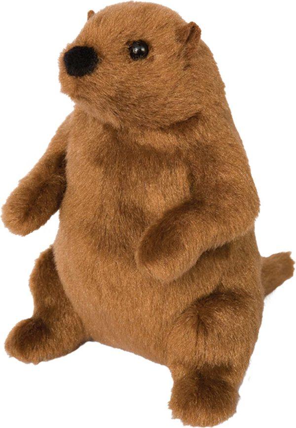 Mr. G. Groundhog