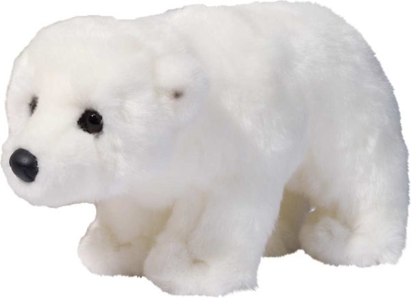 Aput Polar Bear