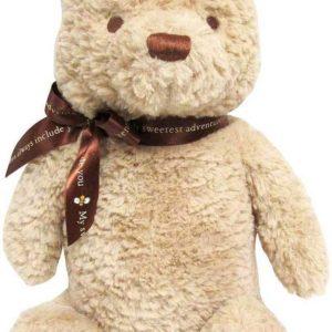 Disney Baby Classic Pooh 14-Inch Stuffed Animal