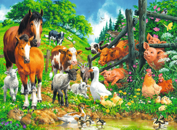 Animals Get Together