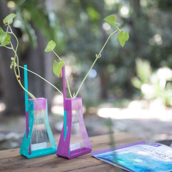 Nancy B's Science Club Way to Grow Hydroponics Kit & Gardening Diary