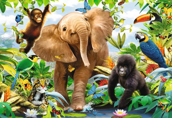 Jungle Juniors