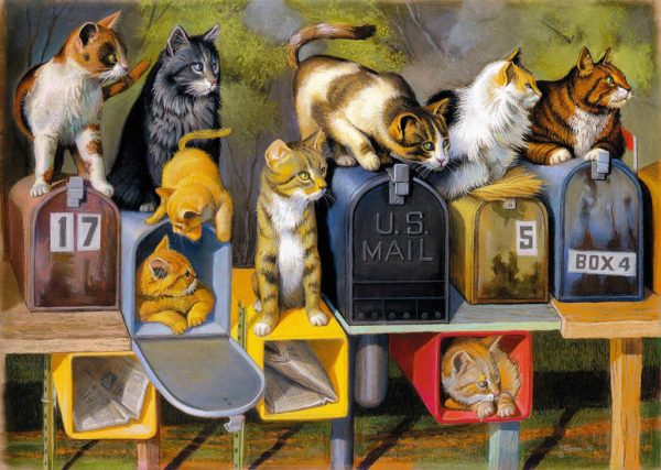 Cat's Got Mail