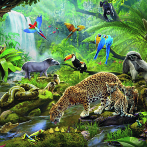 60 Pc Rainforest Animals Puzzle