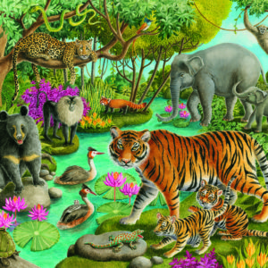 Animals Of India - 60 Piece